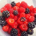 Summer Foraging in Forest Park: BERRIES!