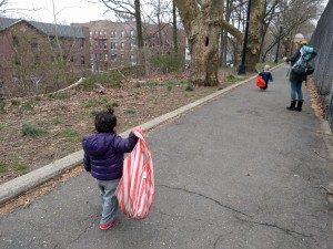 tiny foragers in Forest Park